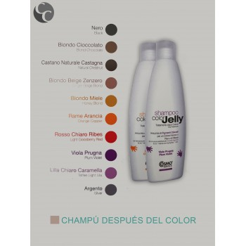 Champú Después de Color 1L